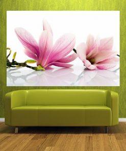 fototapety kwiaty salon