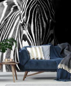 Tapeta z motywem zebry