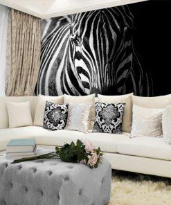 tapety zebry