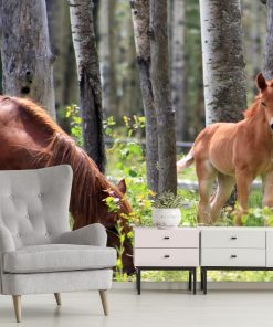 Dzikie konie - tapeta