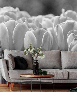 Fototapeta z tulipanami