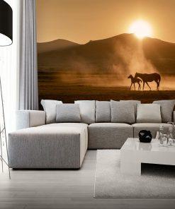 Fototapeta konie i zachód słońca