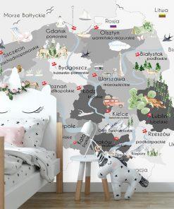 Fototapeta mapa polski