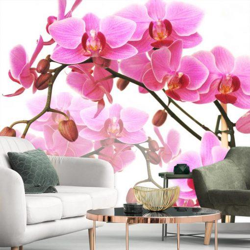 Tapeta z różowymi kwiatami