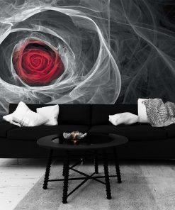Fototapeta z czerwoną różą