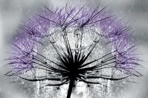 Odcienie fioletu na tapecie