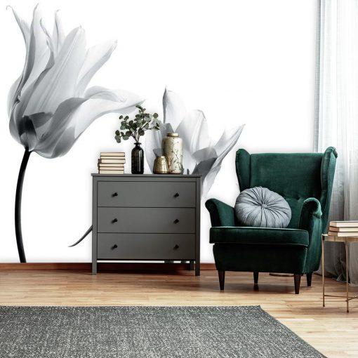 Trzy tulipany na fototapecie