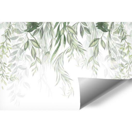 Foto-tapeta z motywem botanicznymn