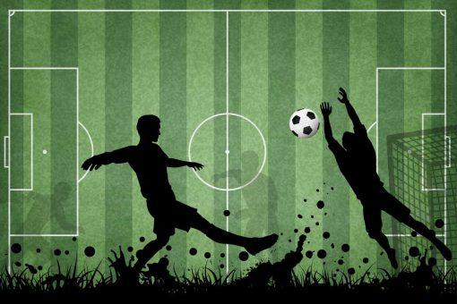 Fototapeta dla mi艂o艣nika footballu - Boisko