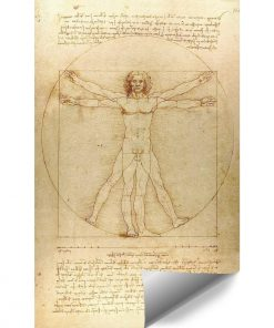 Fototapeta inspirowana Leonardo da Vinci do klubu