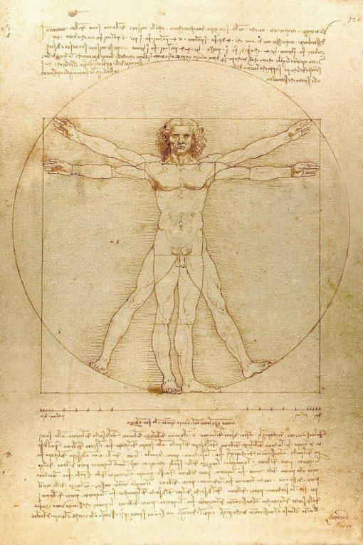 Fototapeta inspirowana Leonardo da Vinci do przedpokoju