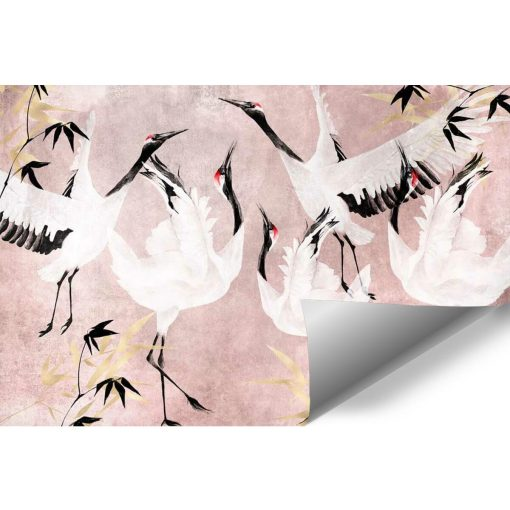 Foto-tapeta stado żurawi